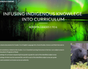 Infusing Indigenous Knowledge Into Curriculum